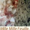 Mille Mille Feuille